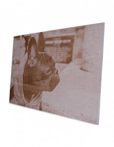 Holzfotogravur Wandbild Ceiba